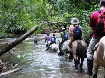 Ausritt im Esquinas Rainforest ©LatinConnect