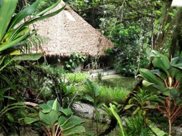 Esquinas Rainforest Lodge @PRINCIPAL