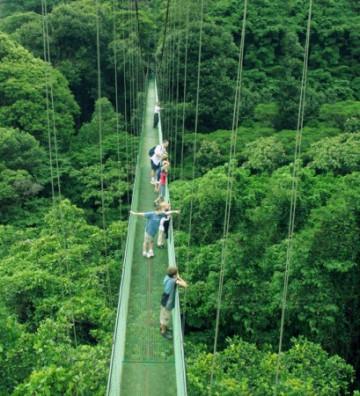 Hängebrücke im Monteverde Nebelwald ©Latinconnect