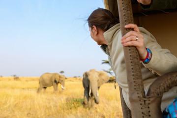 Südafrika - Safari-Abenteuer Reise