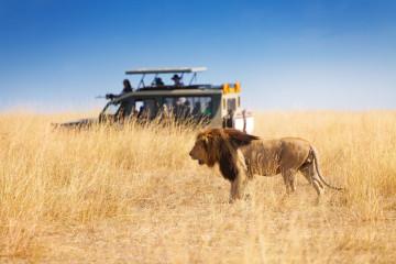 Südafrika Reise Spezialist