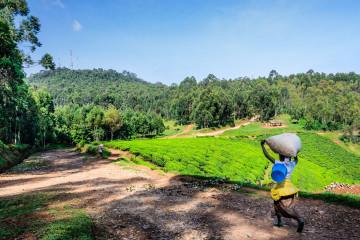 Uganda Ruanda