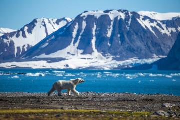 Expedition - Spitzbergen