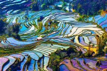 China Reise: Yunnan