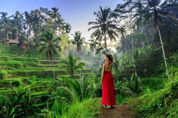Reise Indonesien: Bali - Dorf & Reisfeld