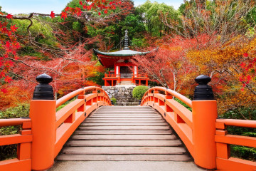 Japan Reise: Kyoto Daigojii Tempelbrücke