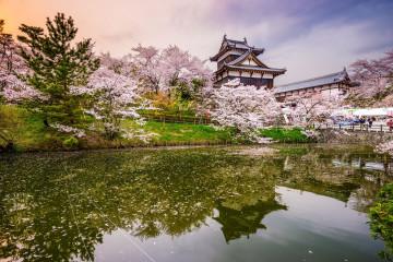 Japan Reise: Nara