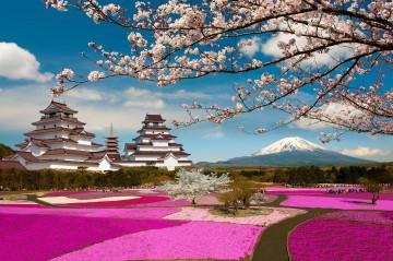 Japan Reise: Kirschblüte & Frühling