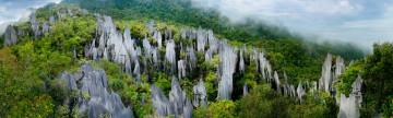 Malaysia Reise - Mulu Nationalpark