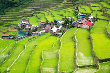 Philippinen Urlaub - Batad Reisterrassen
