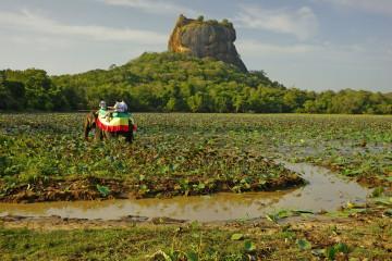 Reise Sri Lanka: Sigiriya