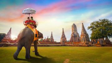 Thailand Reise: Elefantenritt am Ayutthaya Tempel