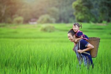 Vietnam Reise: Land & Kultur