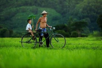 Reise Vietnam Vietnamesen