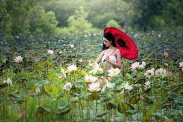 Reise Vietnam - Orchideen