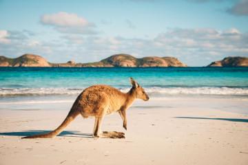 reise australien westküste