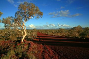 Australien Reise Outback