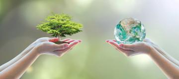 Nachhaltig Reisen Spezialist