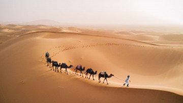 Marokko Reise - Wüste