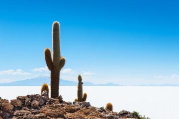 Bolivien Reise: Uyuni