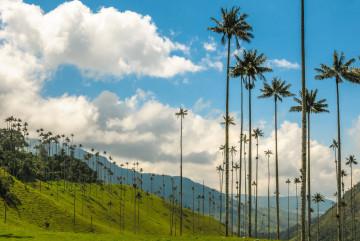 Kolumbien Reise: Valle de Leyva