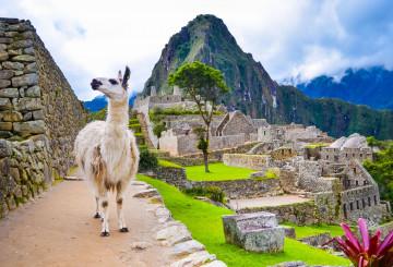 Peru Chile Reise Machu Picchu
