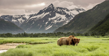 Reise: Alaska & Yukon