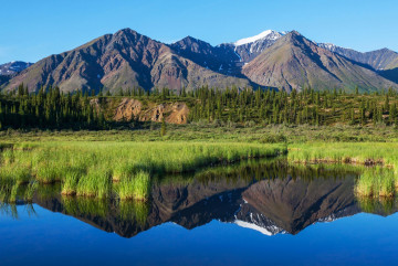Reise: Denali Nationalpark