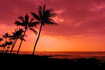 Hawaii Honululu