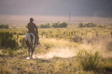 USA Reise: Texas Cowboy