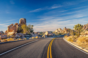 Reise USA Westen - Joshua Tree Nationalpark
