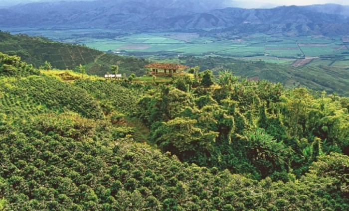 armenia kolumbien