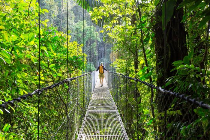 5 Tage Einmaliges Costa Rica Dschungelerlebnis MESO Reisen