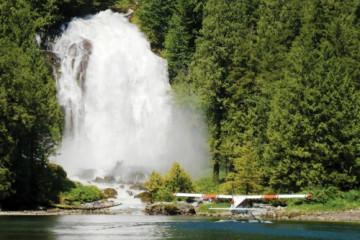 Umgebung der West Coast Wilderness Lodge