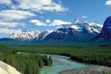 Athabasca River Valley, Jasper NP ©Travel Alberta