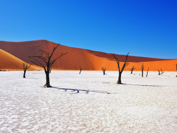 Namibia & Botswana Explorer