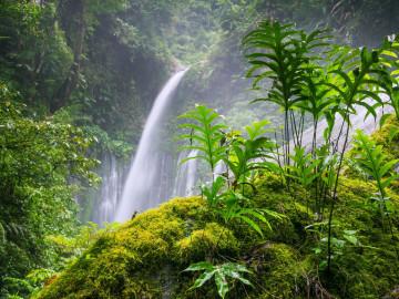 Indonesien Reise: Tiu Kelep Wasserfall - Lombok