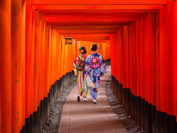 Japan Reise: Geisha im Fushimi Inari Shrine