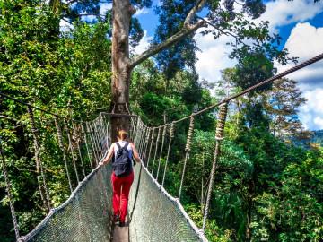Malaysia Reise: Borneo