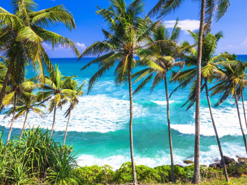 Reise Sri Lanka: Strand