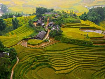 Vietnam Reise: Dorf und Reisfeld in Sapa