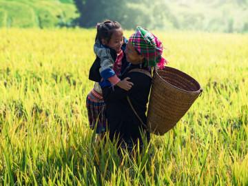 Vietnam Reise: Sapa Reisterrasse und Einheimische