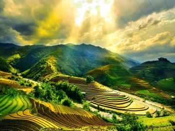Reise Vietnam Reisefelder