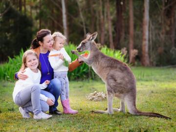 Australien Reise Elternzeit