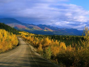 Alaska & Yukon Reise - Dempster Highway