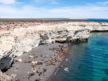 Argentinien Reise Puerto Madryn