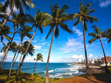 Brasilien Reise - Salvador de Bahia