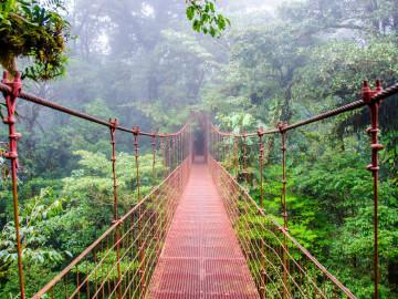 Costa Rica Brücke