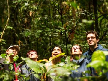 Panama - Dschungel Abenteuer