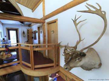 Kanadas Wildnisresort: Große Blockhütte